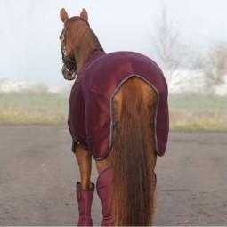 ELECT/S EKI 10 -15 km  - LE GARDIEN ELECTRIQUE